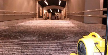 Limpieza en profundidad de gran zona enmoquetada en Hotel Arts de Barcelona